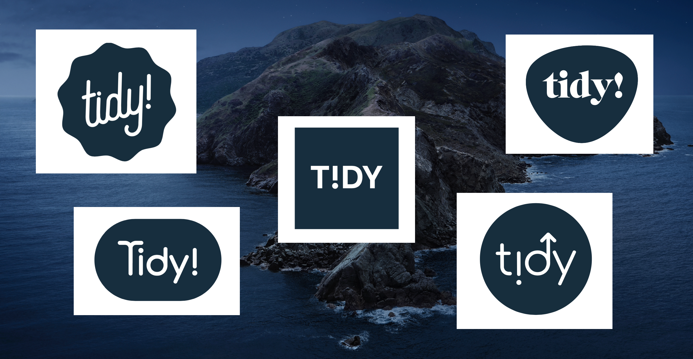 Screenshot of tidy logo concepts by Jason